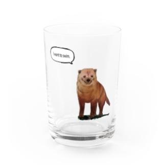 泳ぎたいヤブイヌ Water Glass