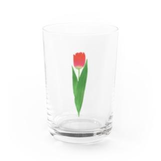 🌷tulip🌷 Water Glass