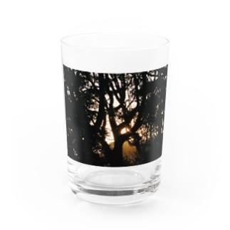 SUTEKI Water Glass