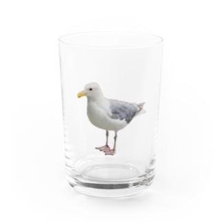 Dude Water Glass