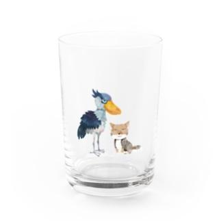 ハシビロコウ&チベットスナギツネ Water Glass