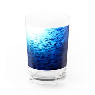 2月のタカベ Water Glass