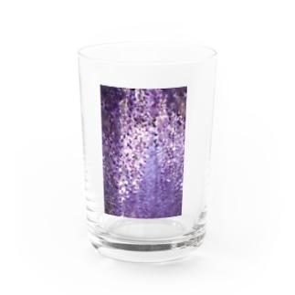 長藤 花 藤の花 Water Glass