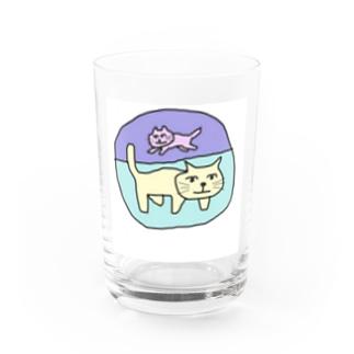 猫2。 Water Glass