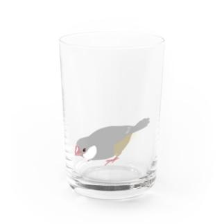 かがんだ文鳥 Water Glass