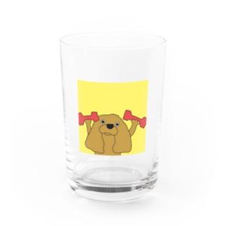 ウィンドウズ ルビー Water Glass