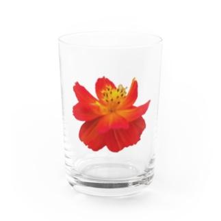 お花 Water Glass