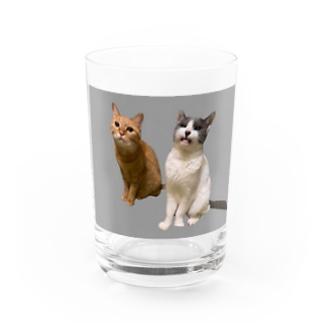 リリ雫 Water Glass