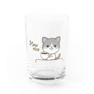 大人のためのねこの黒白猫のシンプルモノトーン Water Glass