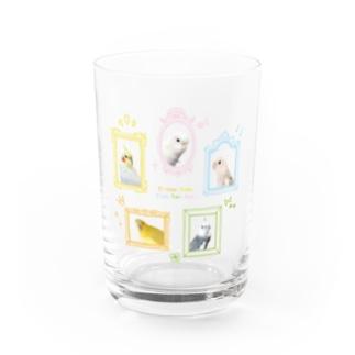 とりちゃんず Water Glass
