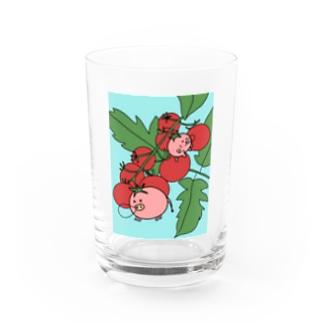 パー子ともち太、また寝てる Water Glass