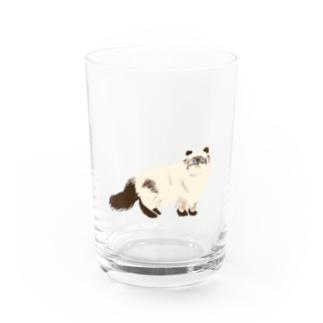 タヌキじゃ無いよ。ネコです。 Water Glass