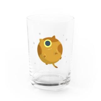 『天体ねこ』ヴィーナス Water Glass