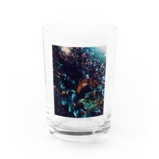 金木犀の匂いと Water Glass