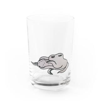 マクラタコ図 Water Glass