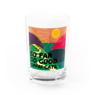 SO FAR SO GOOD Water Glass
