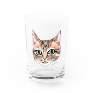 tommy Water Glass