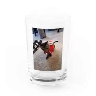 アイドルやん Water Glass