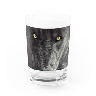 BLACK WOLF Water Glass