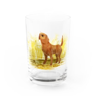 LABRADOR the best dog Water Glass