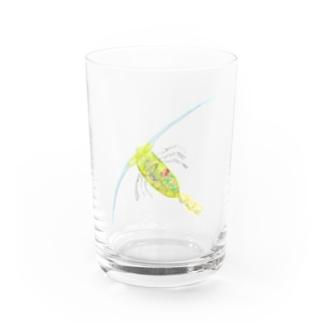 カイアシ Water Glass