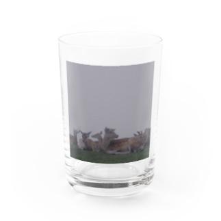 Fog and deer II Water Glass