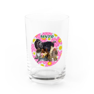 mntoつくね仲間入りver Water Glass
