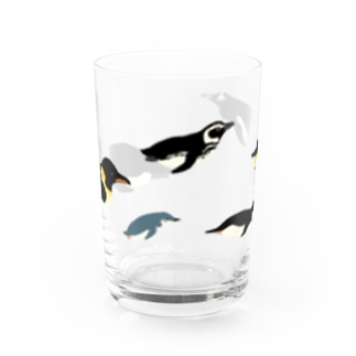 Penguin link Water Glass