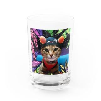 ヒップホッププリピ! Water Glass