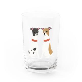 やたにまみこのema-emama『ウィペット』 Water Glass