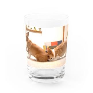 かがれるときはイケメンで Water Glass