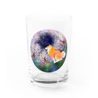 お花見柴犬さん Water Glass