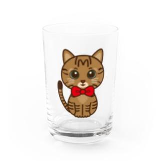キジトラのすずちゃん・ロゴなし02 Water Glass