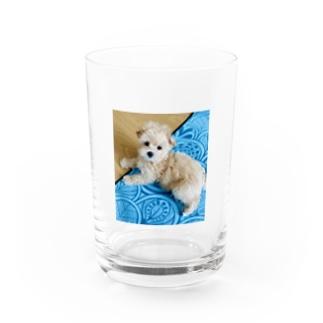まろん Water Glass