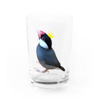 文鳥の王様 Water Glass