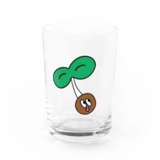 カイワレ Water Glass