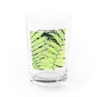 ジュラ 1 - Jura 1 -  Water Glass