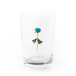 奇跡 Water Glass