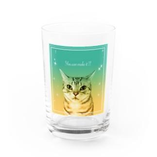 君ならできるよ!!と応援してくれる猫 Water Glass