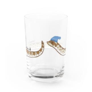 セイブシシバナヘビ(ノーマル) Water Glass