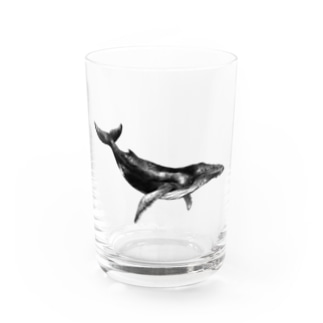 クジラA Water Glass