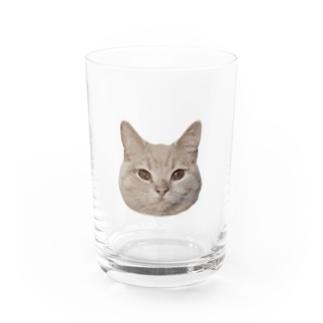 猫のチロルさん Water Glass