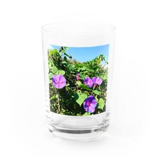 夏の花 Water Glass