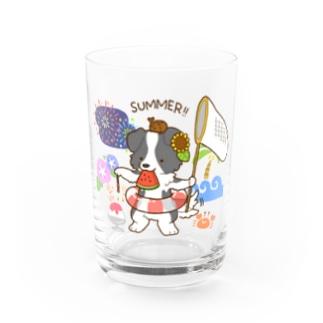 ボーダーコリーのライラ 夏満喫 Water Glass