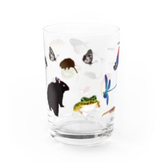 奄美のいきものたち Water Glass