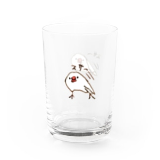 スサー Water Glass