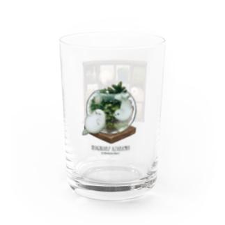 超架空アザラシ・グラス Water Glass