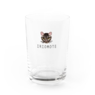 IRIOMOTE イリオモテヤマネコ(顔) Water Glass