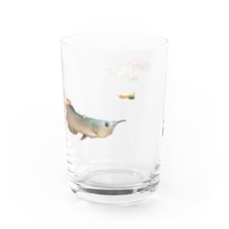 魚 Water Glass