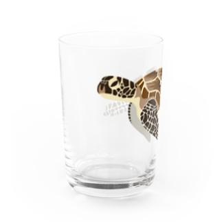ウミガメ Water Glass